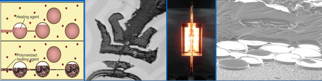 Journée scientifique SF2M - Les matériaux autocicatrisants